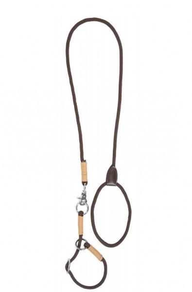 Halsband und Hundeleine